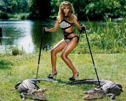 beyonce_crocodile_1280x1024