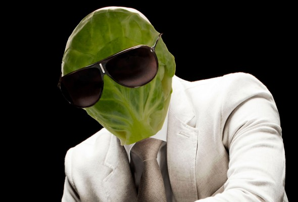 pitbull-as-a-brussel-sprout